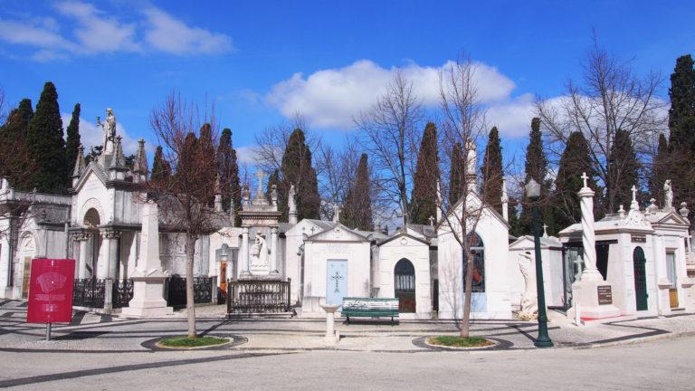 """o Cemitério dos Prazeres foi construído em 1833 para acolher as milhares de vítimas mortais da epidemia de """"cólera morbus"""" que assolou Lisboa nesse ano."""